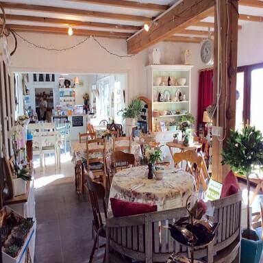 Garden Café at Somerset Flower Farm
